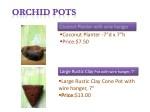 coconut planter 7 d x 7 h price 7 50