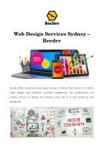 web design services sydney beedev