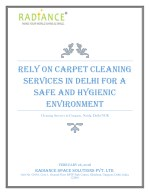 rely on carpet cleaning services in delhi
