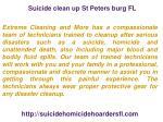 suicide clean up st peters burg fl 1