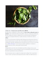 spinach is a rich source of flavonoid anti
