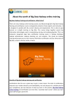 about the worth of big data hadoop online training