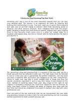 4 exclusive dog grooming tips and tricks