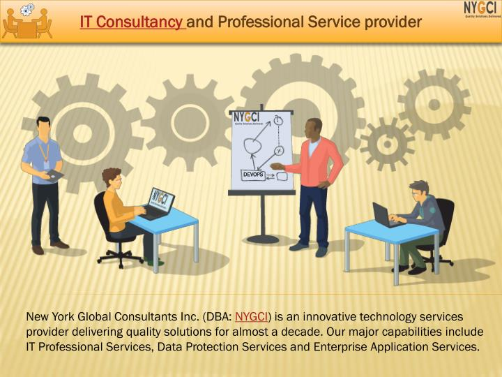 it consultancy and professional service provider n.
