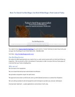 how to check for bed bugs get rid of bed bugs