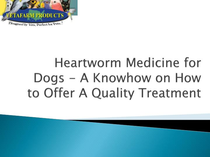 heartworm medicine for dogs a knowhow on how to offer a quality treatment n.
