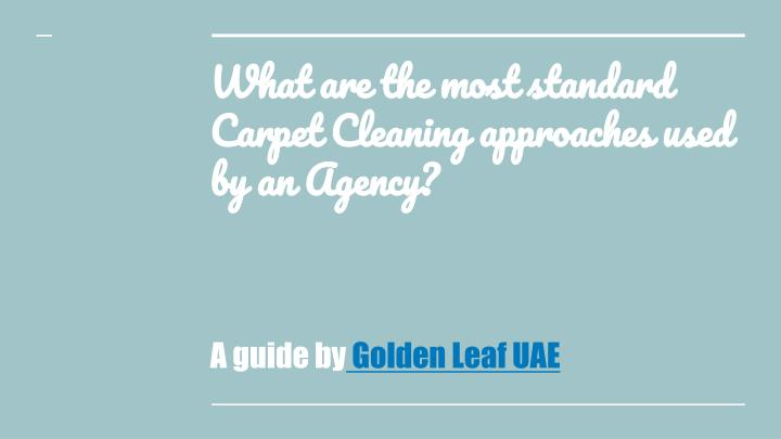 what are the most standard carpet cleaning approaches used by an agency n.
