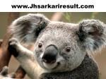 www jhsarkariresult com 1