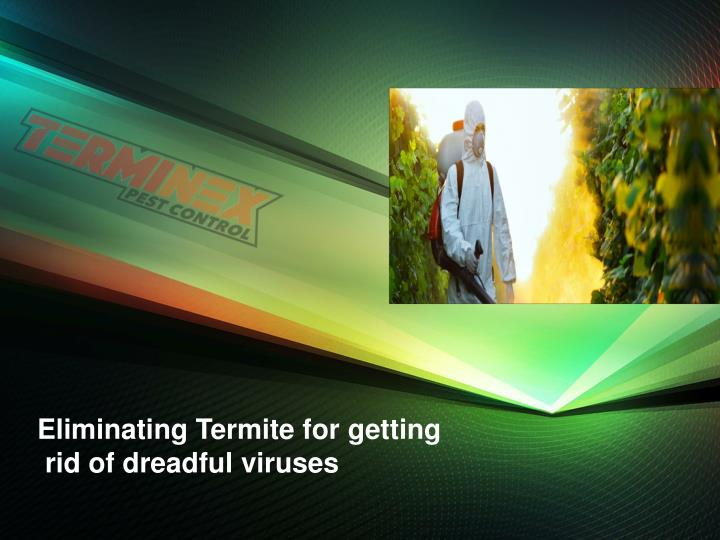 eliminating termite for getting rid of dreadful n.