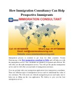 how immigration consultancy can help prospective
