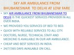 sky air ambulance from bhubaneswar to delhi