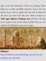 agra is the first destination of this tour