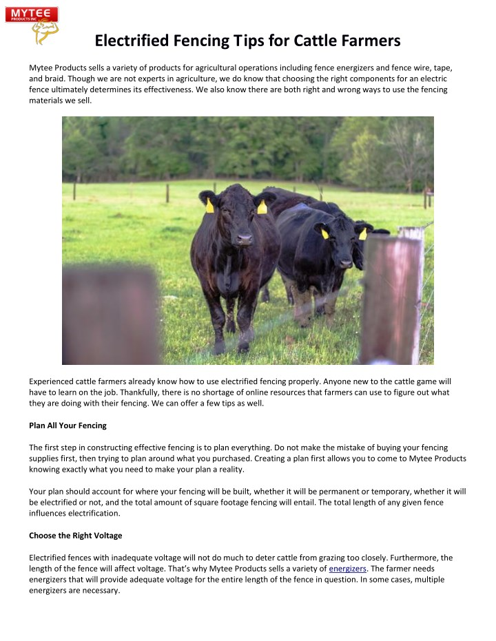 electrified fencing tips for cattle farmers n.