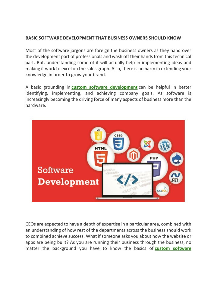 basic software development that business owners n.