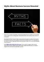 myths about business success revealed