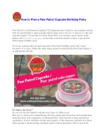 how to plan a paw patrol cupcake birthday party