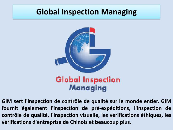 global inspection managing n.