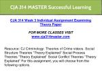 cja 314 master successful learning 13