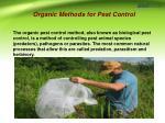 organic methods for pest control