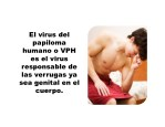 el virus del papiloma humano o vph es el virus