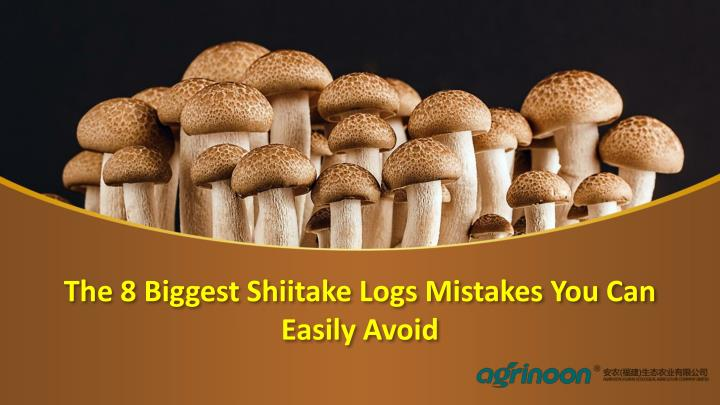 the 8 biggest shiitake logs mistakes you can easily avoid n.