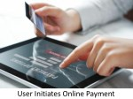 user initiates online payment