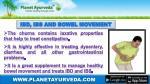 ibd ibs and bowel movement