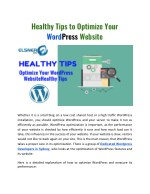 healthy tips to optimize your word press website