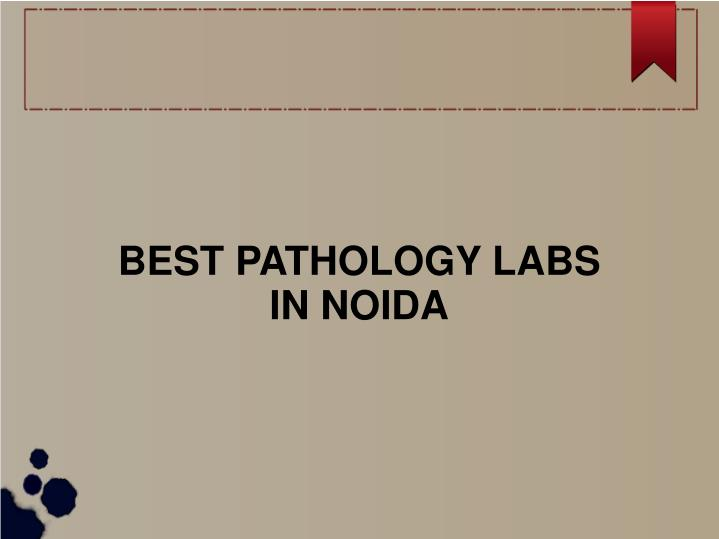 best pathology labs in noida n.