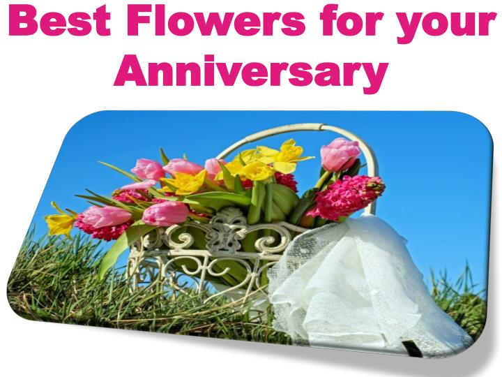 best flowers for your anniversary n.