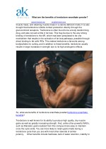 what are the benefits of trenbolone enanthate 1