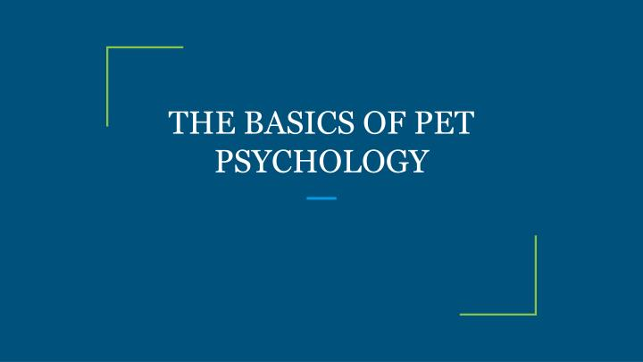 the basics of pet psychology n.