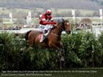 tiger roll ridden by k m donoghue clears the last