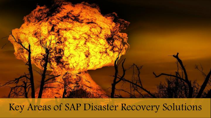 key areas of sap disaster recovery solutions n.