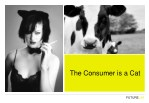 the consumer is a cat