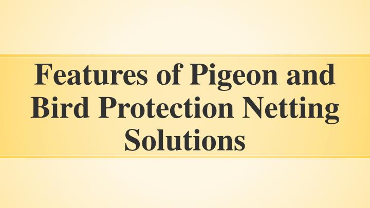 features of pigeon and bird protection netting solutions n.