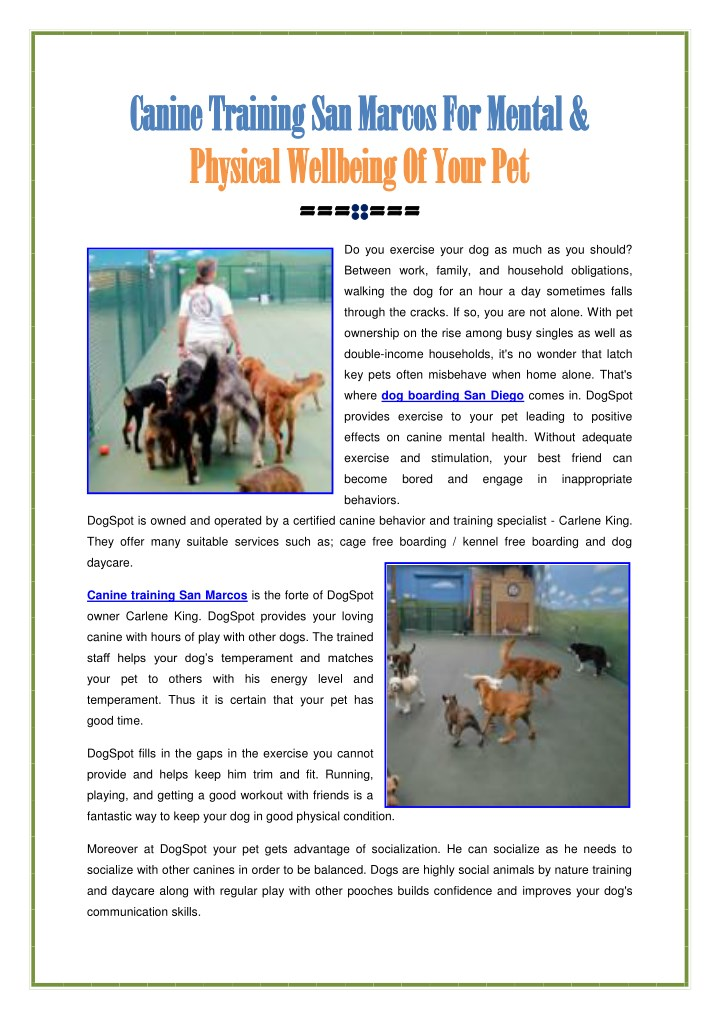 canine training san marcos for mental canine n.