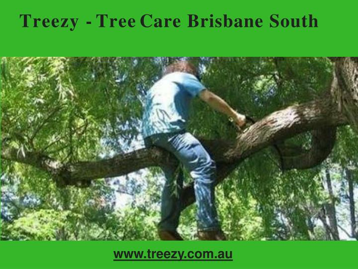 treezy tree care brisbane south n.