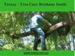 treezy tree care brisbane south
