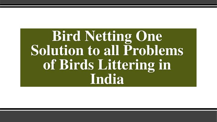 bird netting one solution to all problems of birds littering in india n.