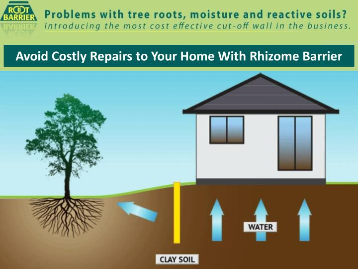 avoid costly repairs to your home with rhizome barrier n.