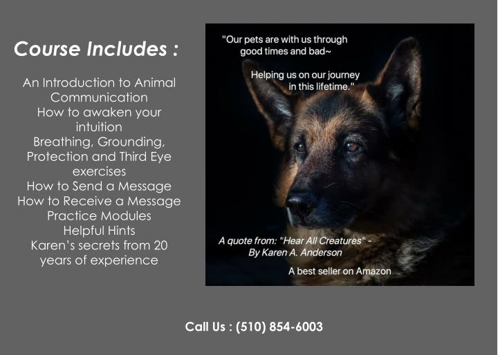 course includes an introduction to animal n.