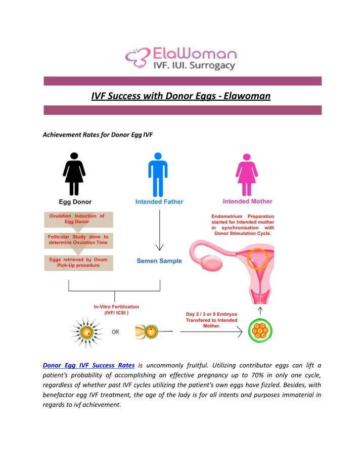 PPT - IVF Success with Donor Eggs - Elawoman PowerPoint