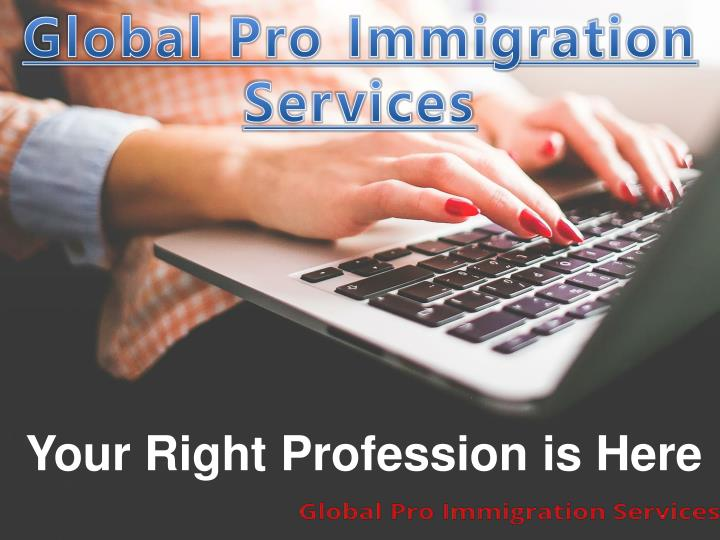 global pro immigration services n.
