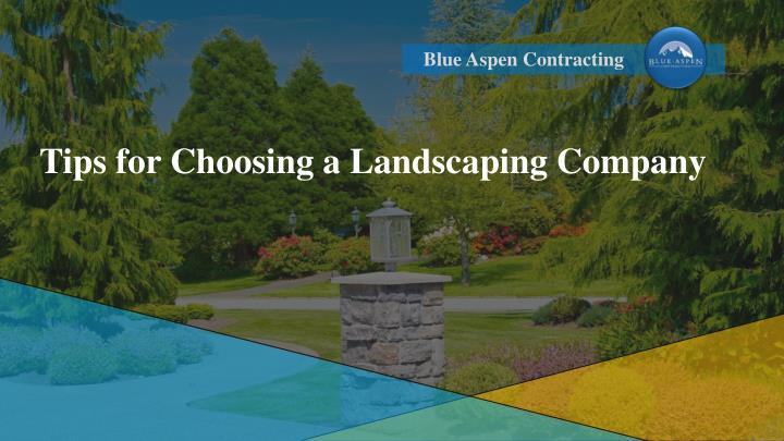tips for choosing a landscaping company n.