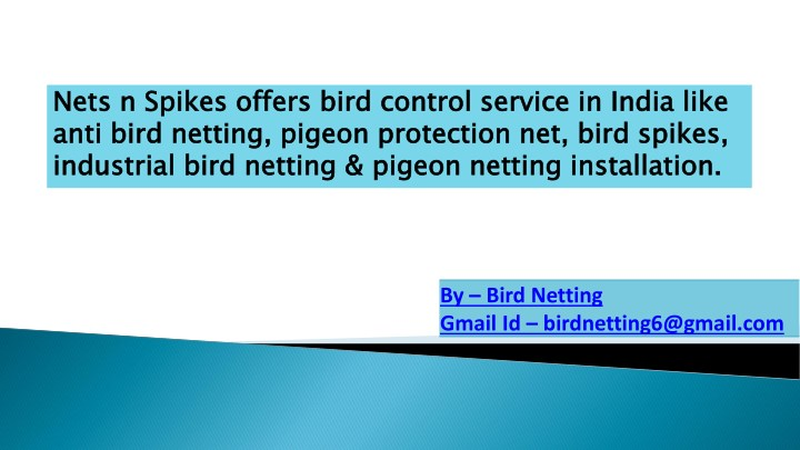 nets n spikes offers bird control service n.