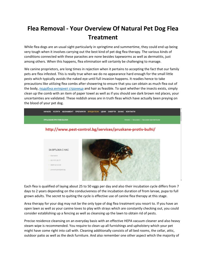 flea removal your overview of natural n.