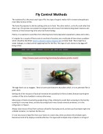 fly control methods