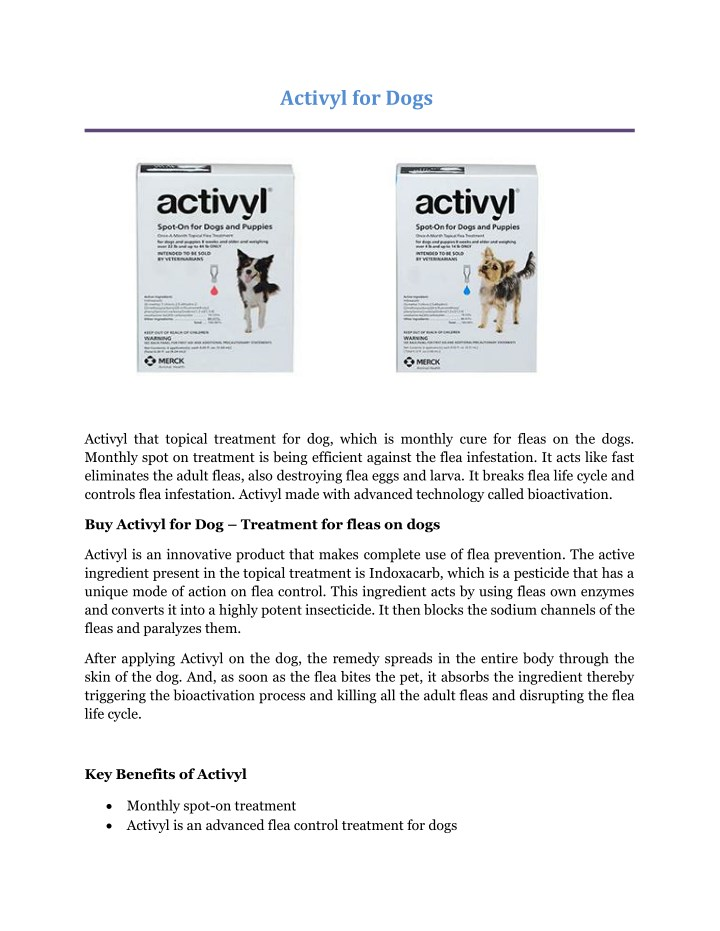 PPT Activyl For Dogs Buy Activyl At F For Flea And