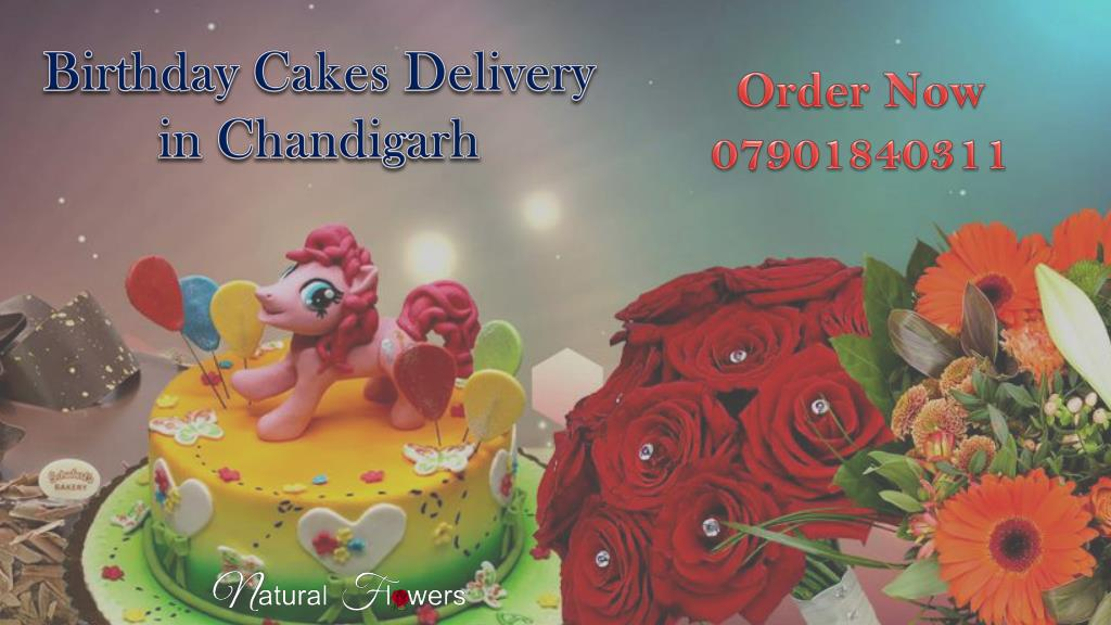Birthday Cakes Delivery In Chandigarh N